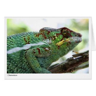 Cartão de presente do camaleão da pantera