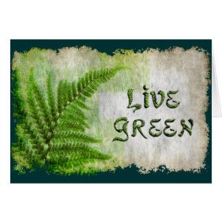 Cartão de presente VERDE VIVO de Eco Enviro para o