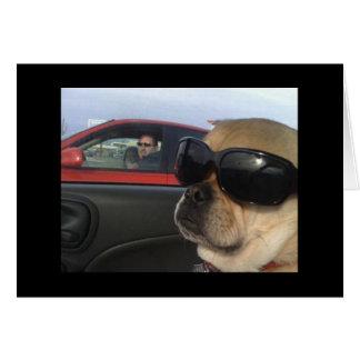 Cartão de Puggles