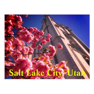 Cartão de Salt Lake City, Utá
