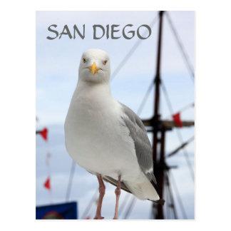 Cartão de San Diego, de gaivota e de barco