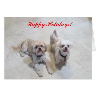 Cartão de Shih Tzu boas festas