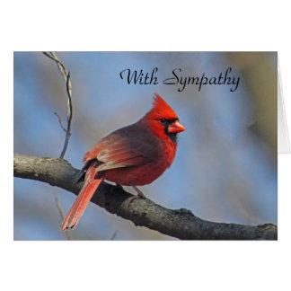 Cartão de simpatia cardinal