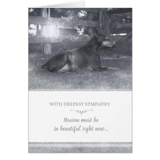 Cartão de simpatia do Doberman - o céu deve ser