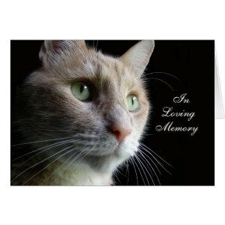 Cartão de simpatia do gato