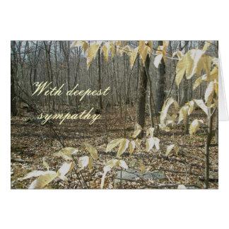 Cartão de simpatia do vidoeiro do inverno