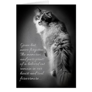 Cartão de simpatia para a perda do gato