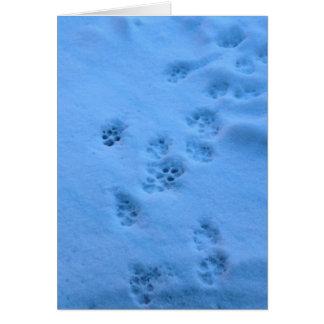 Cartão de simpatia para um animal de estimação