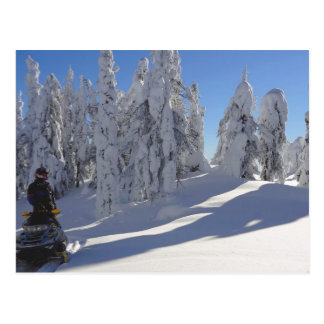 Cartão de Snowmobiler Winterscape