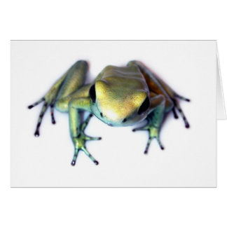 Cartão de Terribilis
