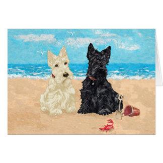 Cartão de Terrier do Scottish