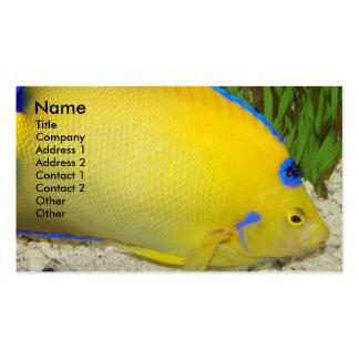 Cartão de visita amarelo da foto do Angelfish da
