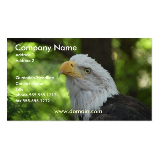 Cartão de visita americano da águia americana
