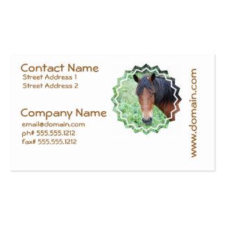 Cartão de visita bonito do cavalo de Paso Fino