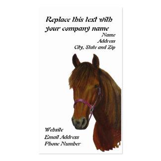 Cartão de visita Chichi uma égua de Paso Fino da