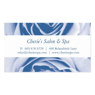 Cartão de visita cor-de-rosa azul pálido do salão