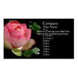 Cartão de visita cor-de-rosa do lírio de água