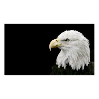 Cartão de visita da águia americana