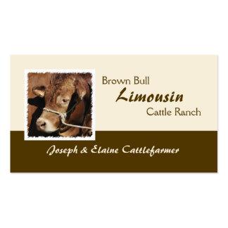Cartão de visita da carne de Limousin