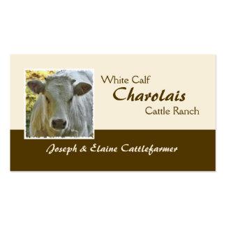 Cartão de visita da carne do charolês
