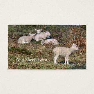 Cartão de visita da fazenda dos carneiros