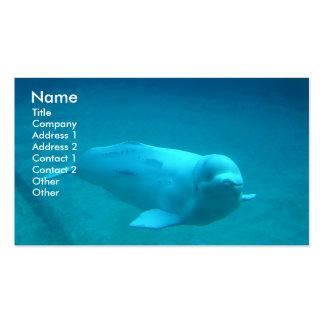 Cartão de visita da foto da baleia da beluga