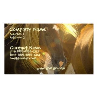 Cartão de visita da foto do cavalo selvagem