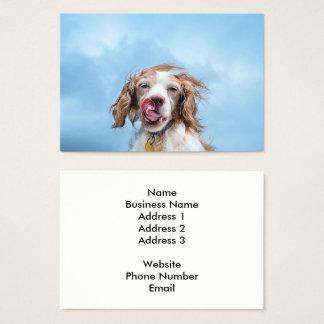 Cartão de visita da indústria do animal de
