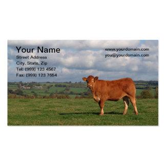 Cartão de visita da vaca