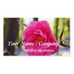 Cartão de visita de jardinagem 1