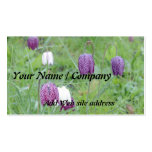 Cartão de visita de jardinagem (Aquiliga)