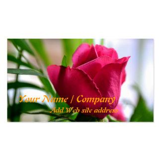 Cartão de visita de jardinagem (aumentou)