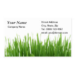 Cartão de visita de jardinagem da grama