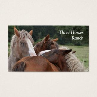 Cartão de visita de três cavalos