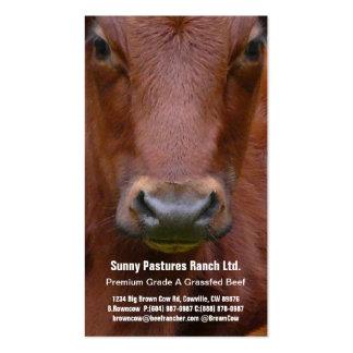 Cartão de visita do boi da carne de Brown