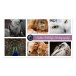 Cartão de visita do fotógrafo dos animais selvagen