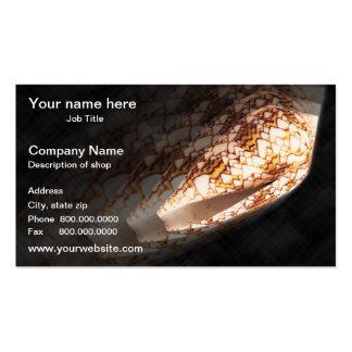 Cartão de visita do modelo de Shell do mar