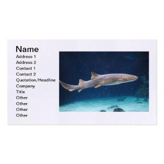 Cartão de visita do tubarão