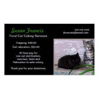 Cartão de visita feroz da causa do gato