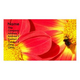 Cartão de visita floral da foto da abelha ocupada