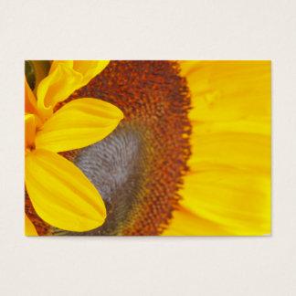 Cartão de visita macro do girassol