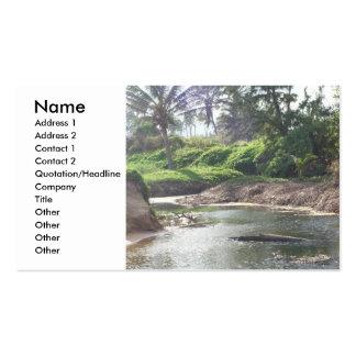 Cartão de visita maré da piscina
