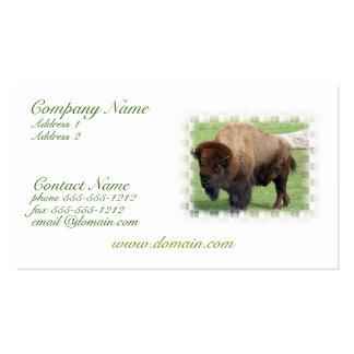 Cartão de visita norte-americano do bisonte