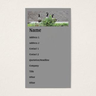 Cartão de visita selvagem do animal dos gansos de