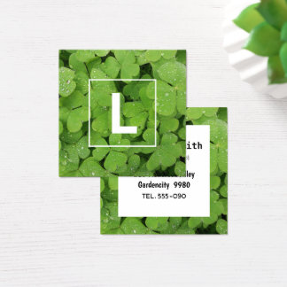 Cartão de visita verde da inicial do trevo