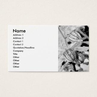 Cartão De Visitas Angulata do Physalis