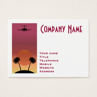 Cartão De Visitas Avião
