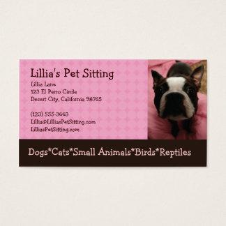 Cartão De Visitas Baby-sitter Boston Terrier do animal de estimação