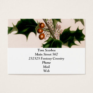 Cartão De Visitas Bagas do azevinho