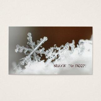 Cartão De Visitas Blizzard de 2009